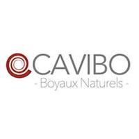 CAVIBO